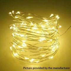 Starry Sky LED Lights 10Meter (DC 12V) - Warm White